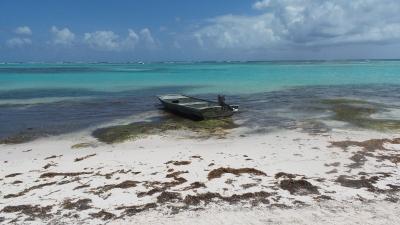 Alone on the Caribbean Sea